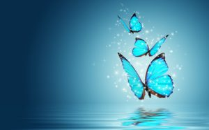 blue-butterfly-morpho-water-reflection-hd-wallpapers